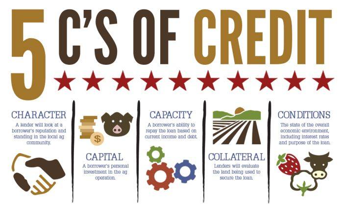5 C's of credit