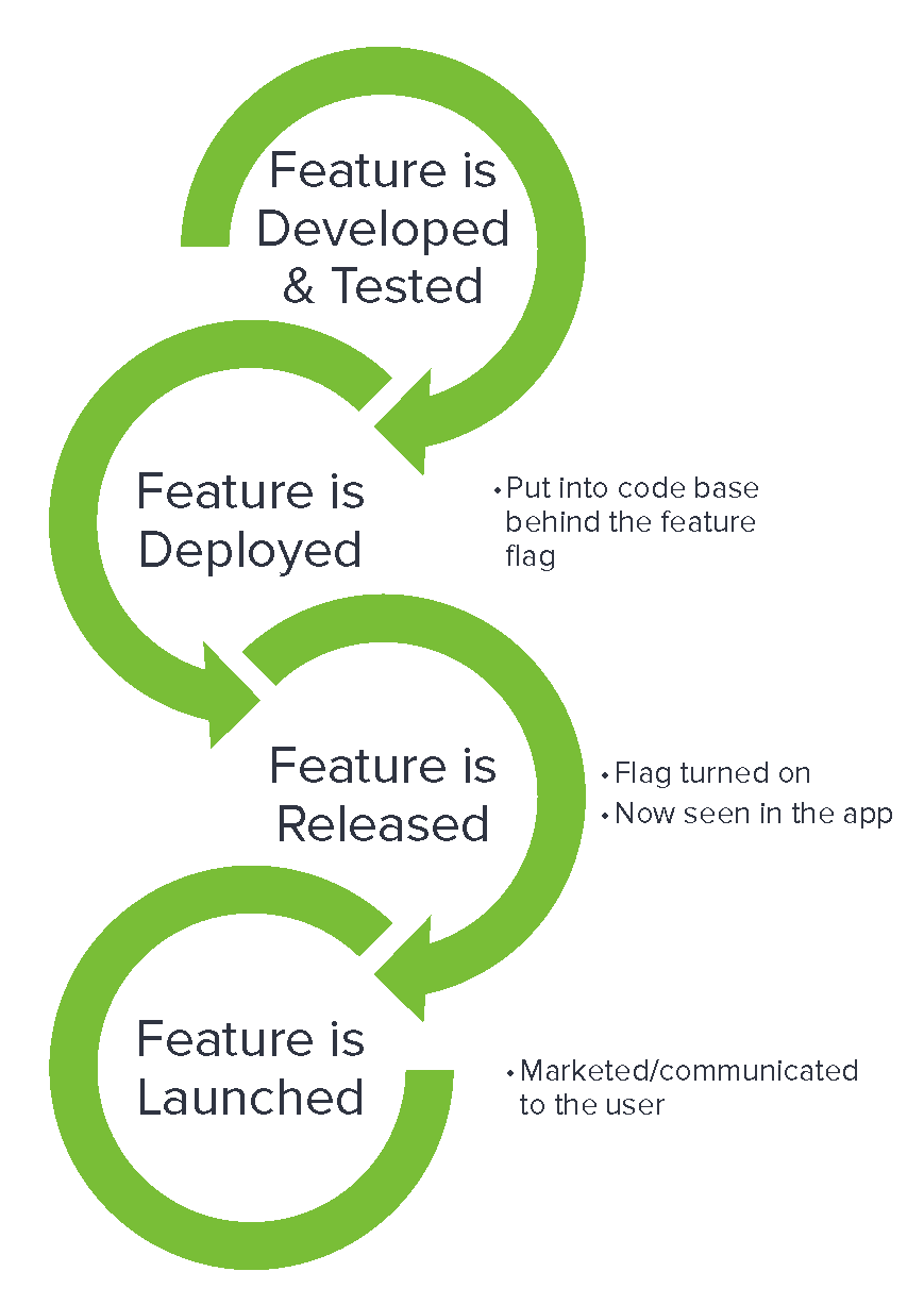 New product release cycle